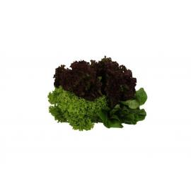 Farmers Market Kuwaiti Mix Lettuce Bag avg. 300g