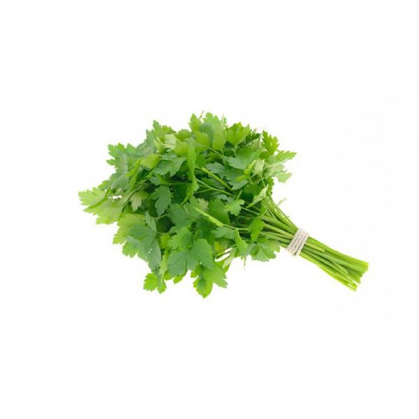 Farmers Market kuwaiti Parsley Bunch