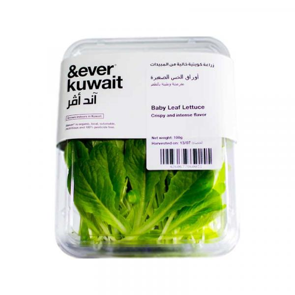 &Ever Baby Leaf Lettuce  Pack 100g