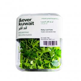 &Ever Baby Leaf Kale  Pack 100g