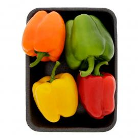 Capsicum Mix 4 colors Holland Pack 400 g