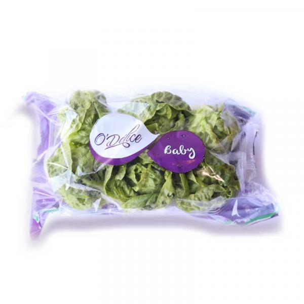 Lettuce Little Gem Spain 10x6p