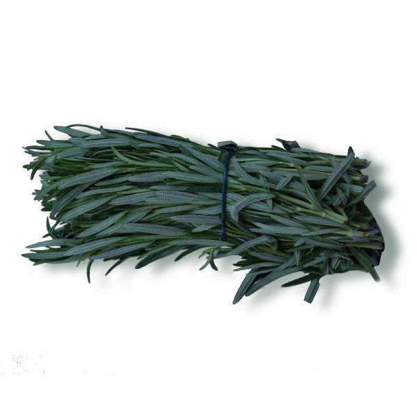 Rosemary Holland Packet 80 g